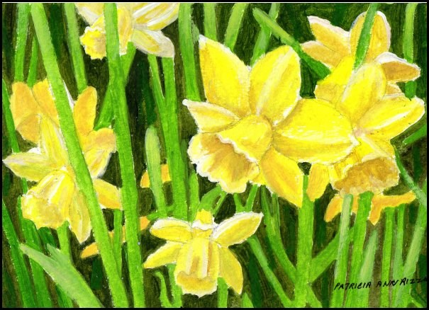 """Just Daffodils"" original fine art by Patricia Ann Rizzo"
