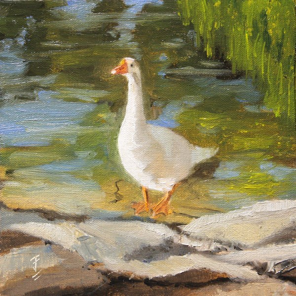 """Goose on the Rocks"" original fine art by Jane Frederick"