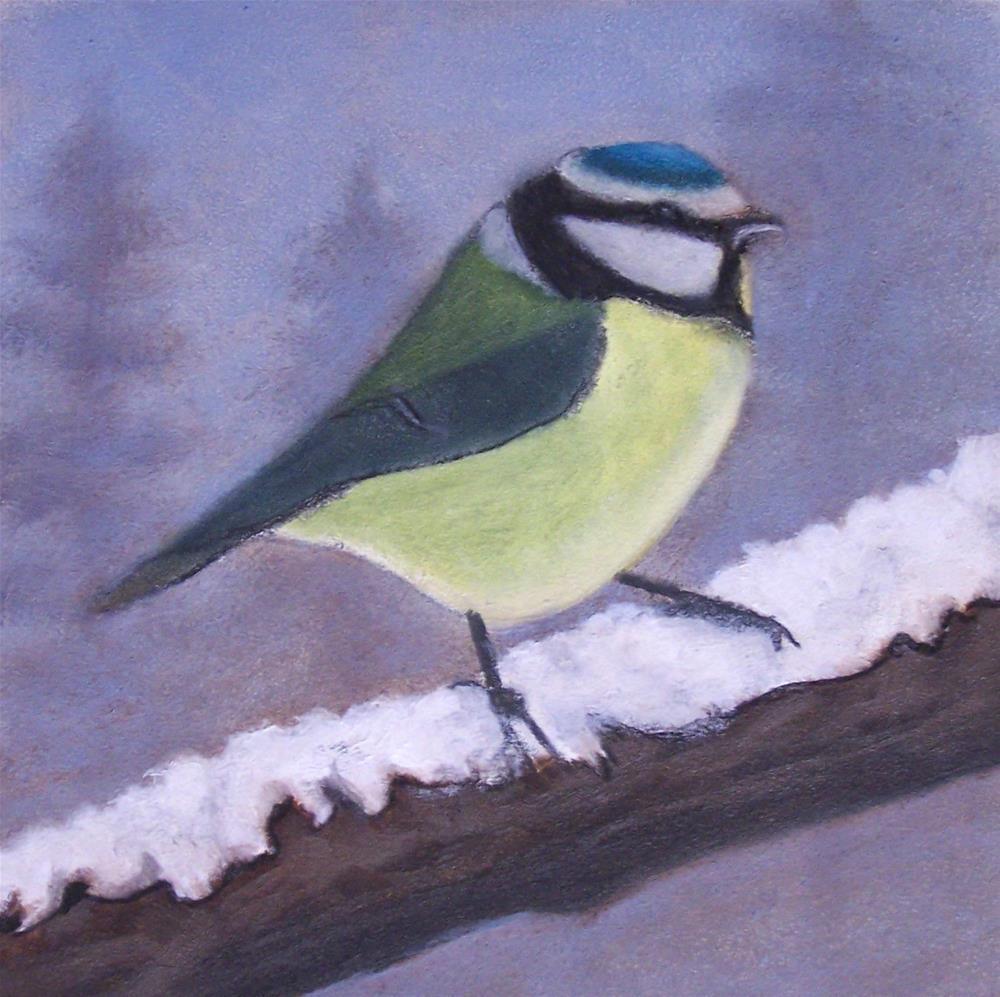 """Blue Titmouse in Winter"" original fine art by John Marcum"
