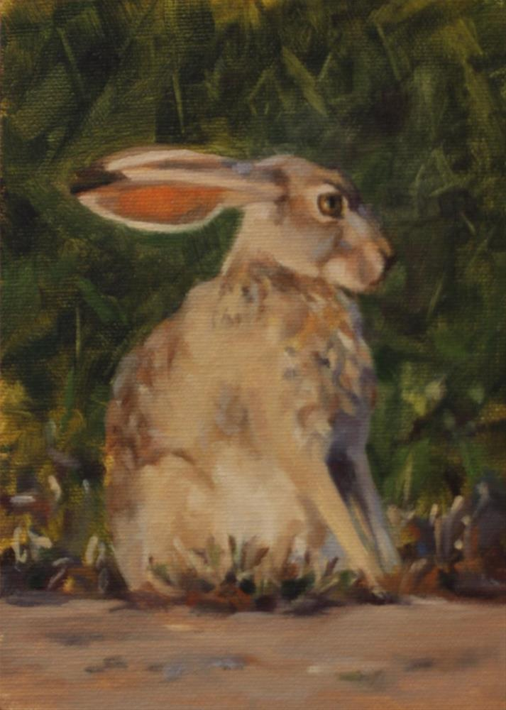 """Flat Ear Jackrabbit (framed)"" original fine art by Pamela Poll"