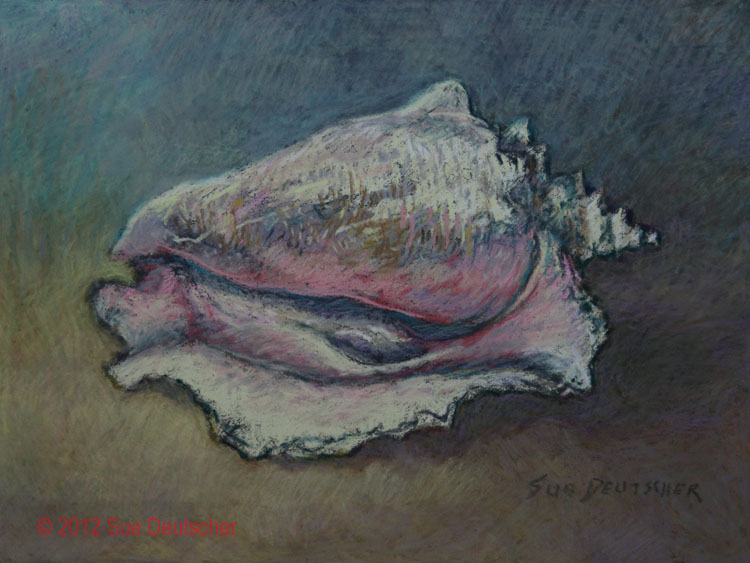 """Conch Shell"" original fine art by Sue Deutscher"