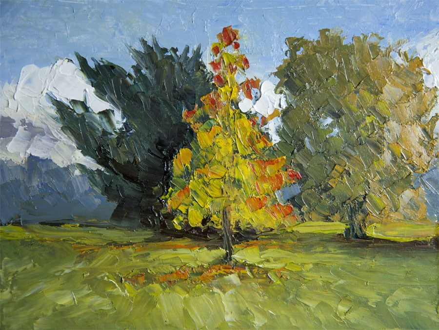 """Autumn Maple"" original fine art by Jethro Knight"