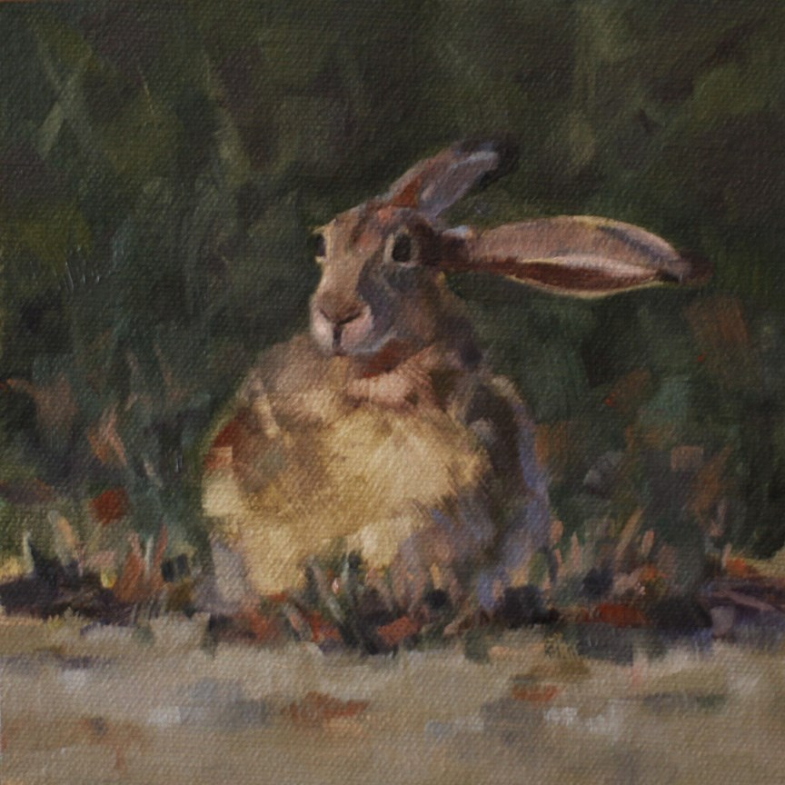 """Flop Ear Jackrabbit"" original fine art by Pamela Poll"