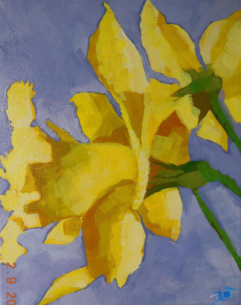 """Bright Daffs"" original fine art by Daryl West"