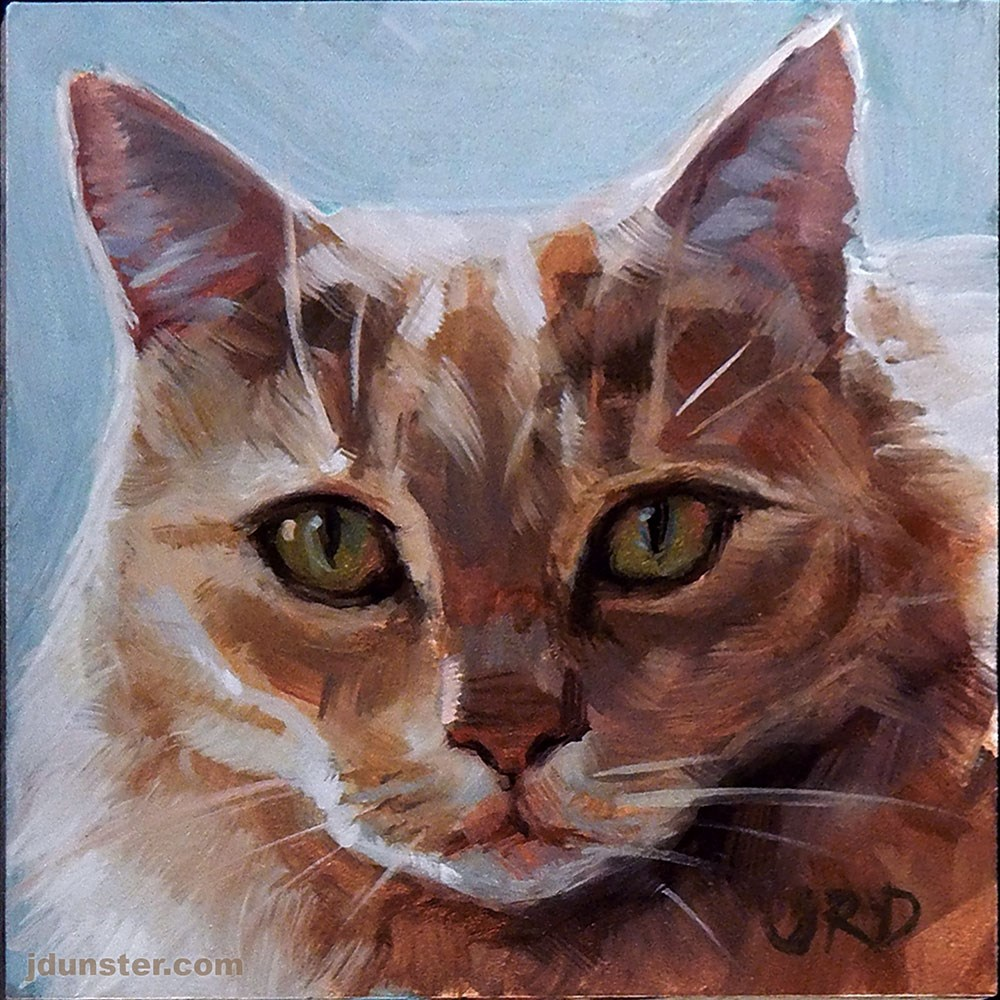 """Fluffy and Orange - Cat Head"" original fine art by J. Dunster"