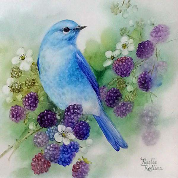 """Blackberry Bluebird"" original fine art by Paulie Rollins"