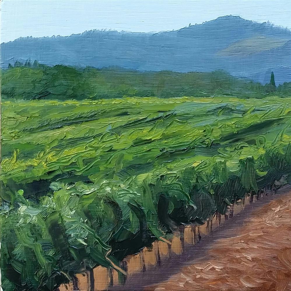 """Sansonnet Vinyard"" original fine art by Kim Homes"