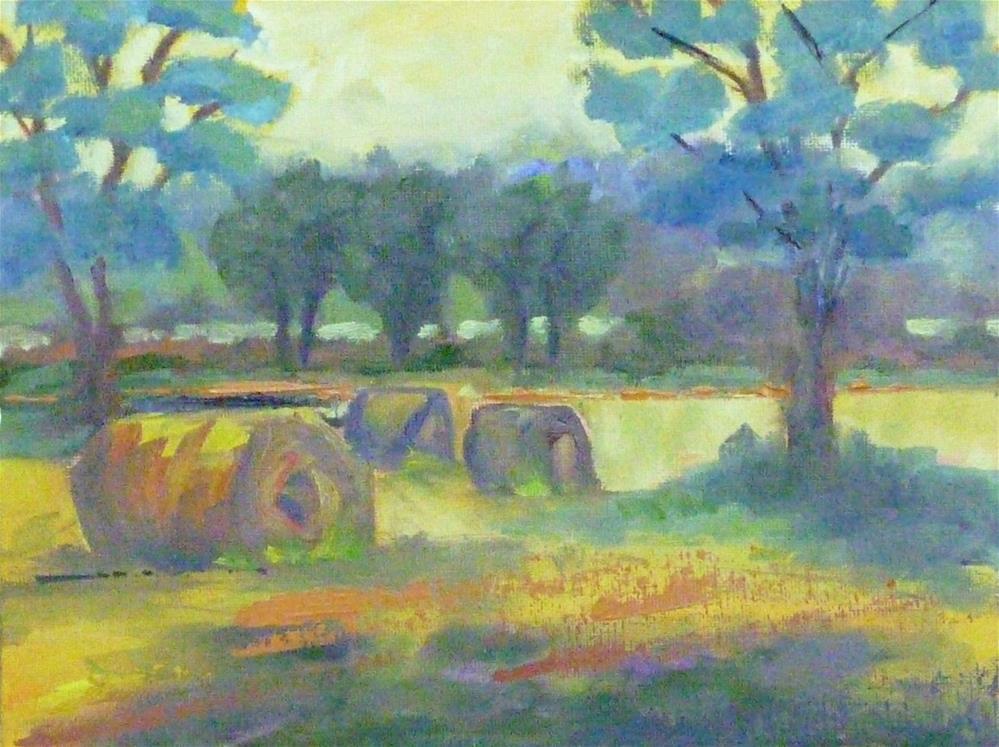 """Hay Harvest"" original fine art by Shawn Deitch"
