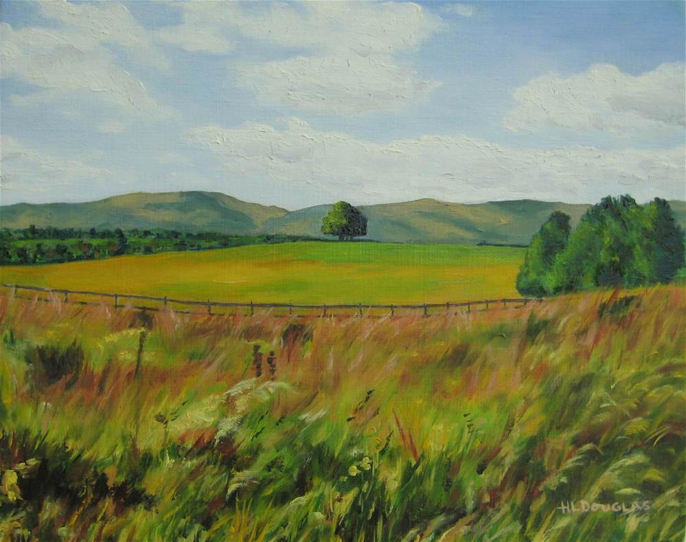 """County Tipperary"" original fine art by Heather Douglas"