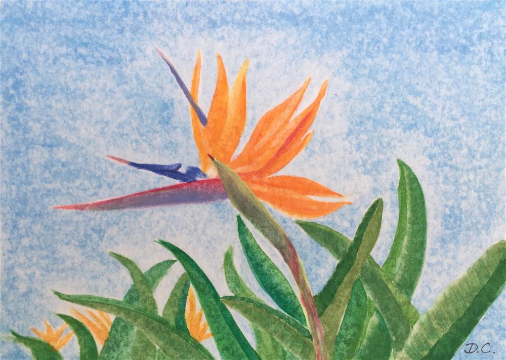 """Bird of Paradise"" original fine art by Diana Chang"