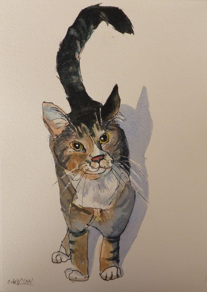 """Rocky"" original fine art by Carolynn Doan"