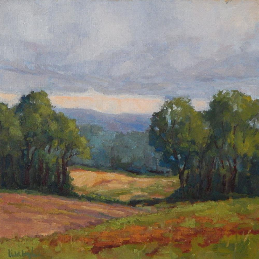 """""""A Distant View"""" original fine art by Lisa Kyle"""