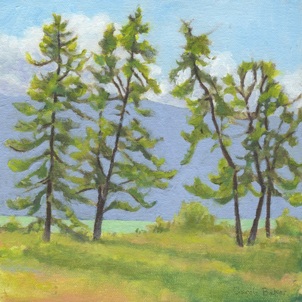"""Atlin Pines"" original fine art by Carole Baker"