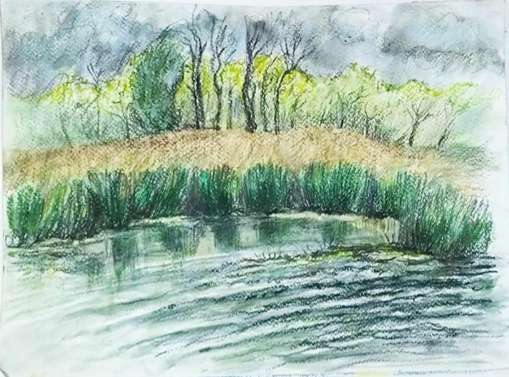 """Shoreline Grasses"" original fine art by Selby Minner"