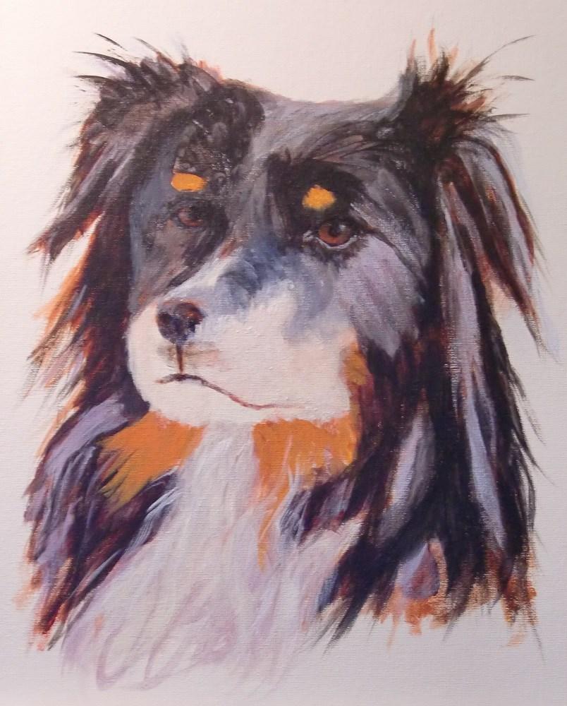 """Australian Shepherd"" original fine art by karen richardson"