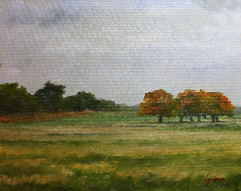"""Turning leaves, Richmond Park."" original fine art by Graham Townsend"