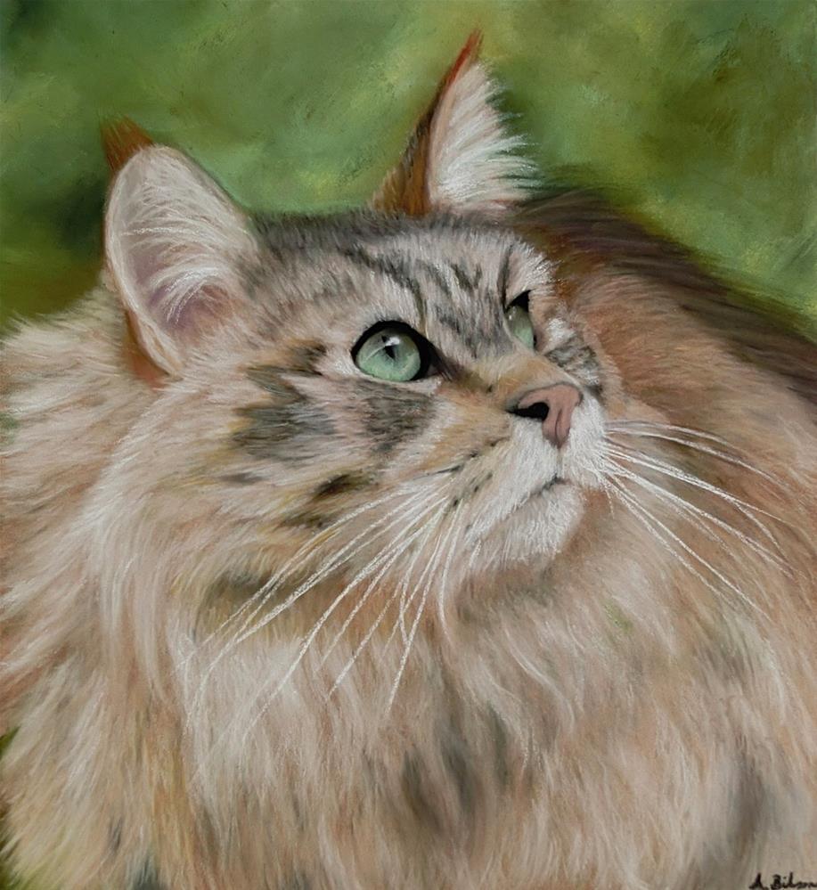 """Maine Coon Cat"" original fine art by Amanda Bilson"