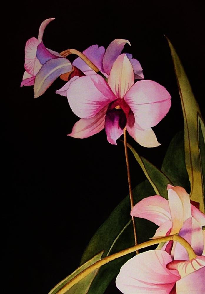 """""""Orchids"""" original fine art by Jacqueline Gnott, whs"""