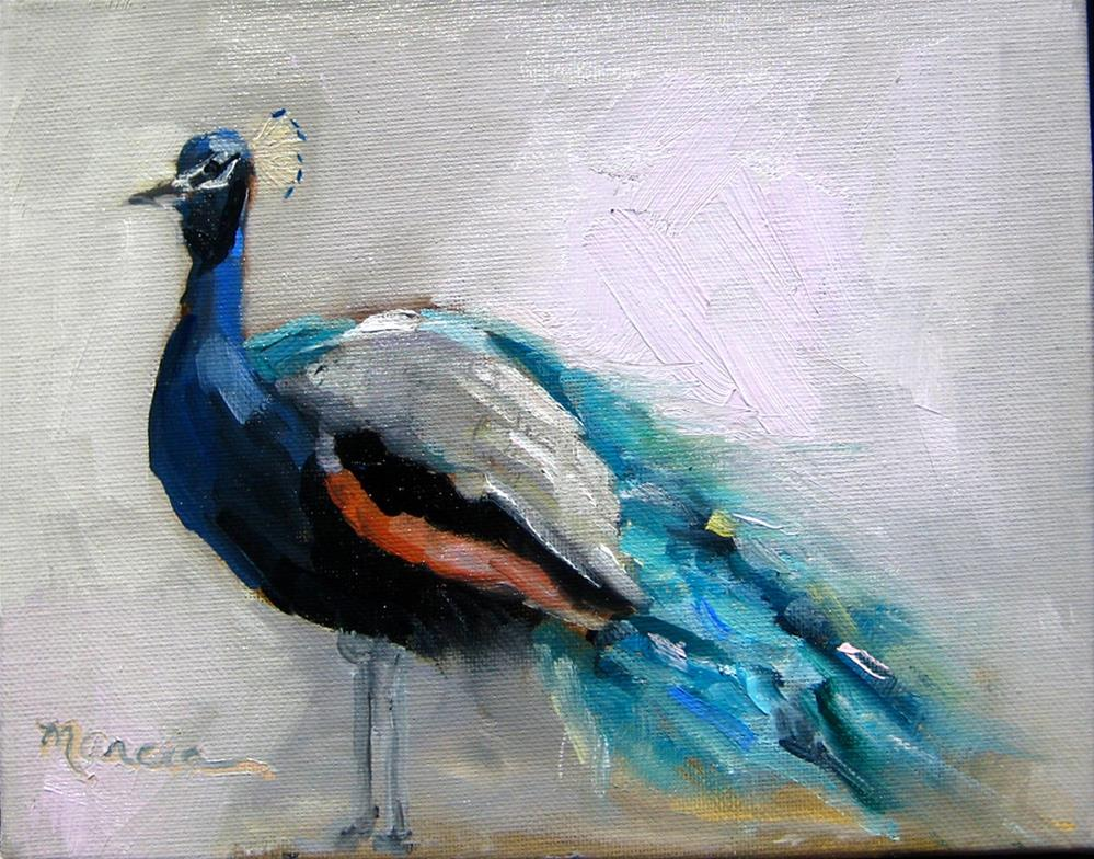 """Poppin Peacock"" original fine art by Marcia Hodges"