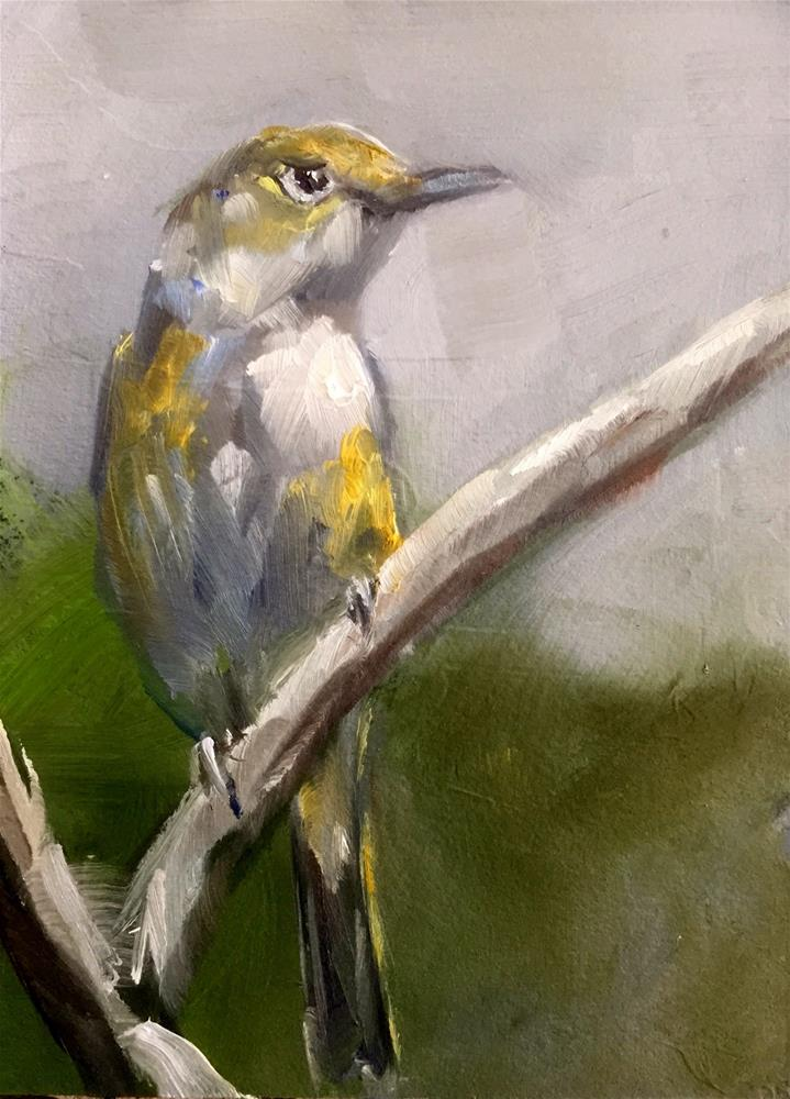"""White-eyed Vireo"" original fine art by Gary Bruton"