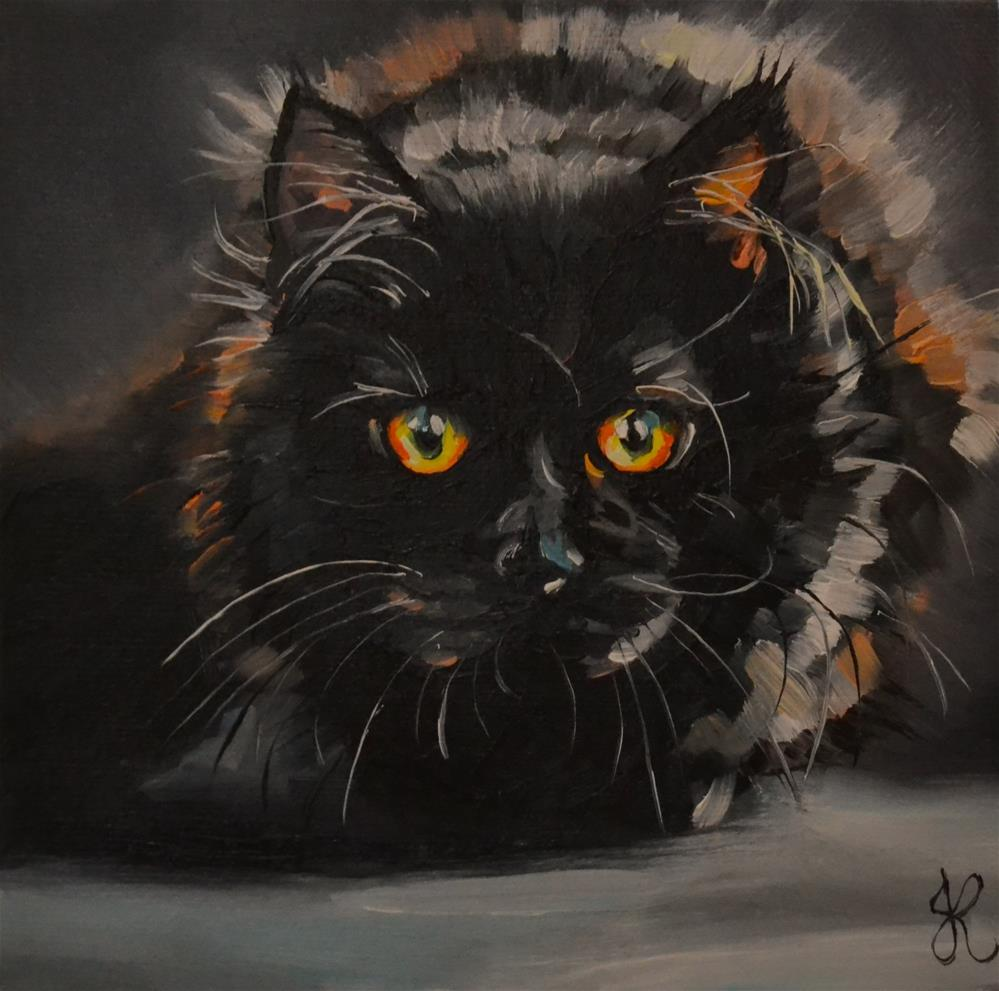 """Black cat"" original fine art by Jacinthe Rivard"