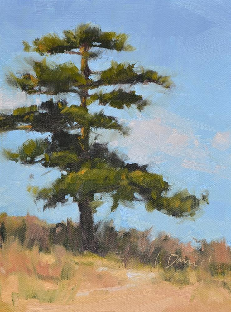 """Twirling Pine - Tree Gesture 1"" original fine art by Laurel Daniel"