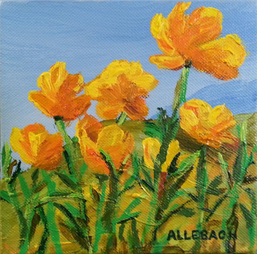 """Golden Poppies"" original fine art by Jo Allebach"