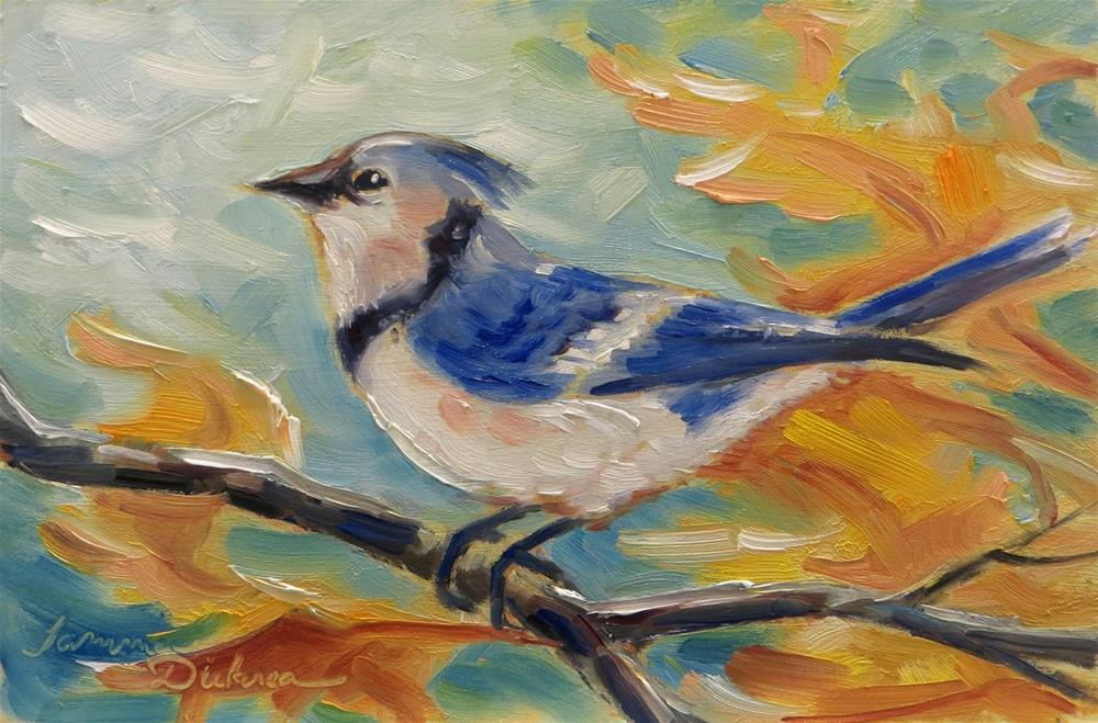 """Autumn Blue Jay"" original fine art by Tammie Dickerson"