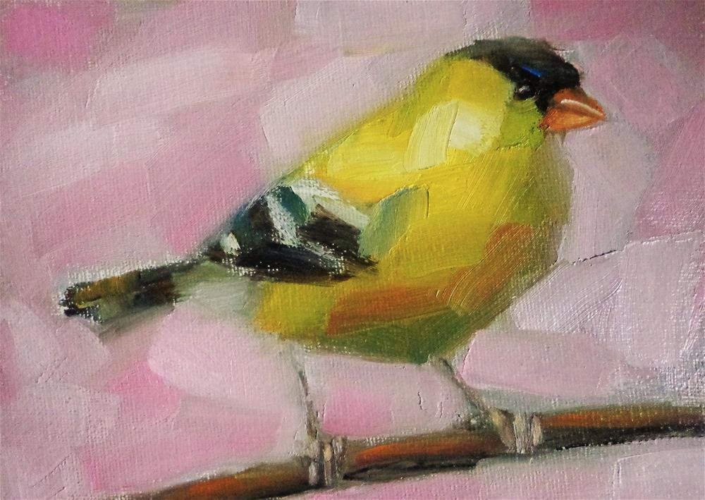 """""""American goldfinch"""" original fine art by Maria Z."""