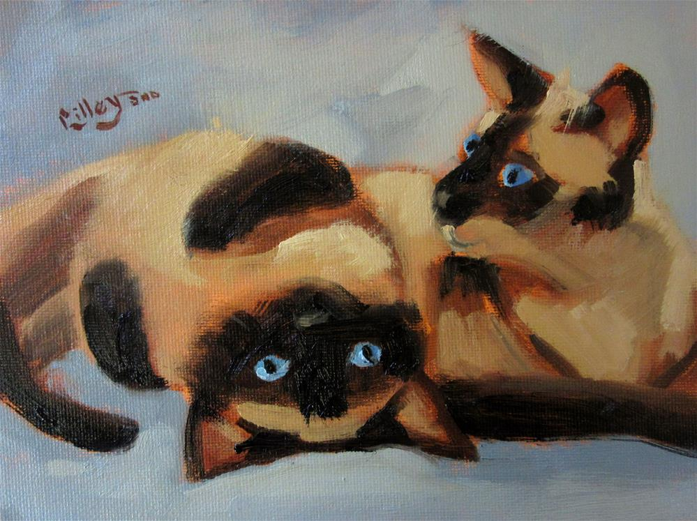 """Out of Catnip, Are We?"" original fine art by Maresa Lilley"