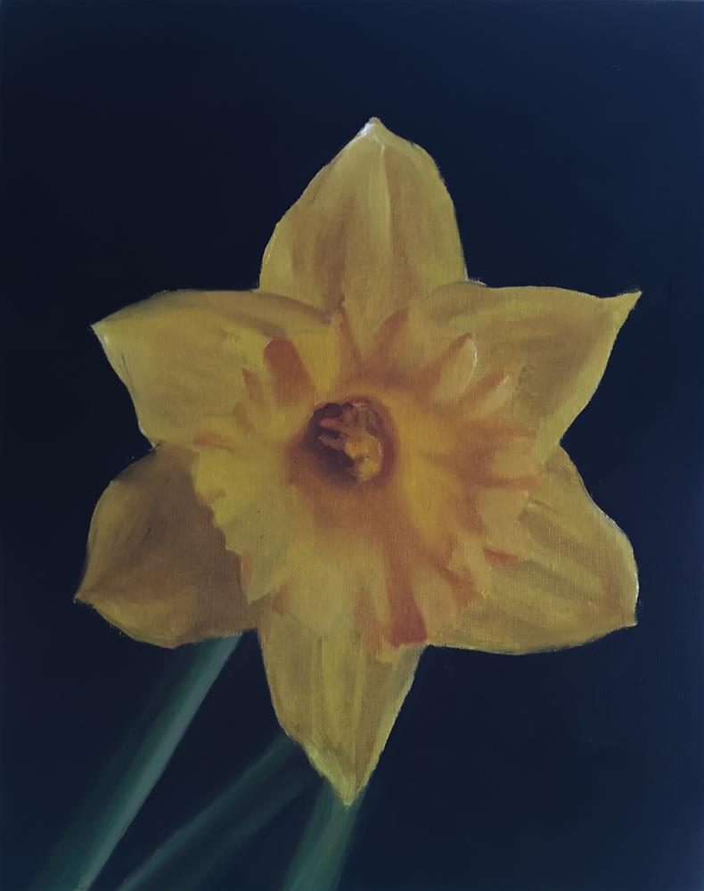 """Daffodil"" original fine art by James Coates"