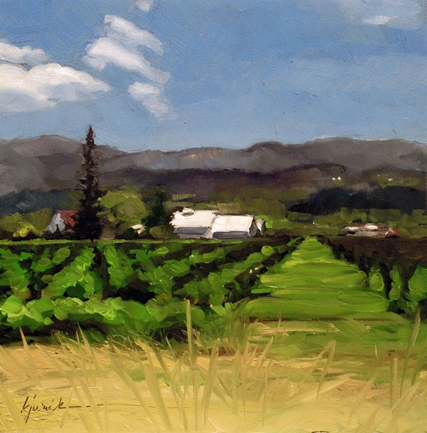 """Wine Drive"" original fine art by Karin Jurick"