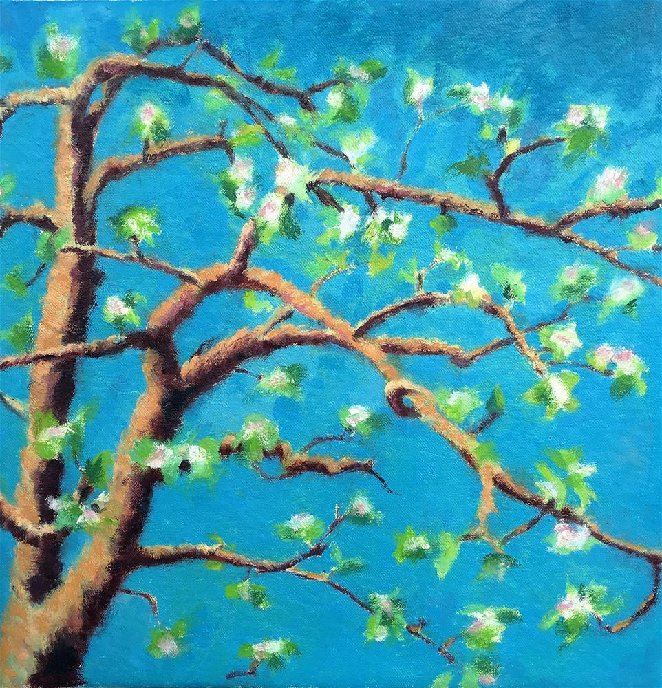 """Apple Blossom"" original fine art by Tracy Wise"