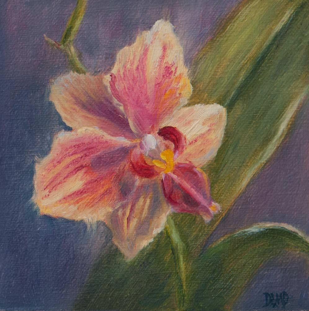"""Surprise Bloom"" original fine art by Debbie Lamey-Macdonald"