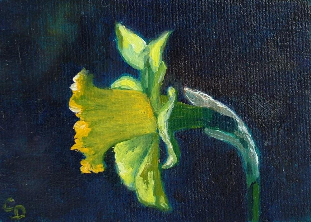 """Daffodil Profile"" original fine art by Christine Derrick"