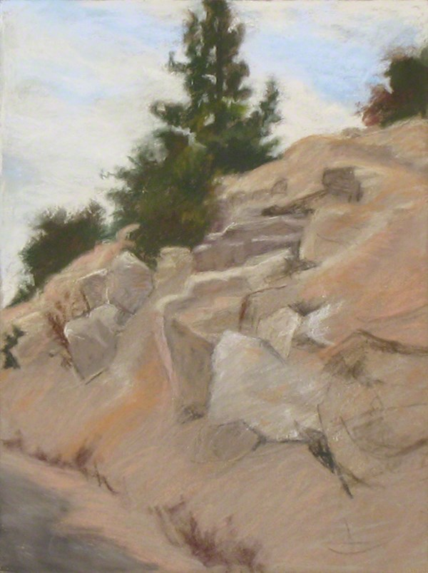 """Pine Tree, Angeles Crest Highway"" original fine art by Susan Z. Forbush"