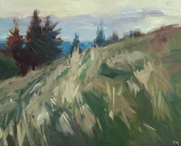 """The Clouds and Grass Play Together at Dusk"" original fine art by Patti McNutt"