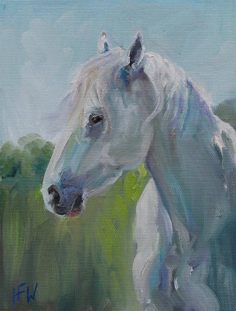 """Sunlit Pony"" original fine art by H.F. Wallen"