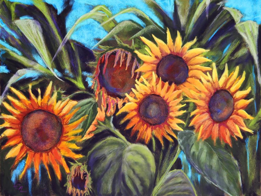 """Hello Sunny"" original fine art by Anna Lisa Leal"