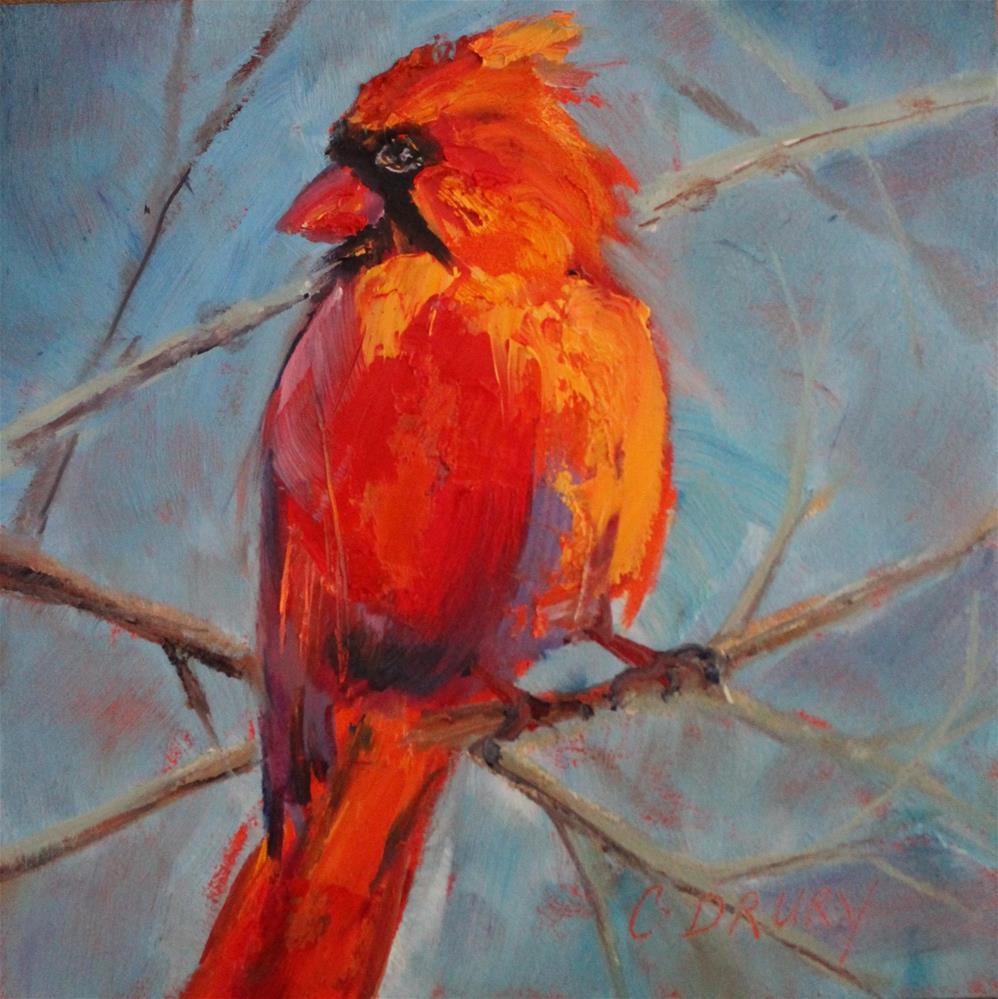 """Cardinal"" original fine art by Colleen Drury"