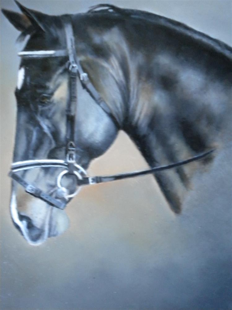 """Cute little Dutch Horse"" original fine art by Hilarie Johnson"