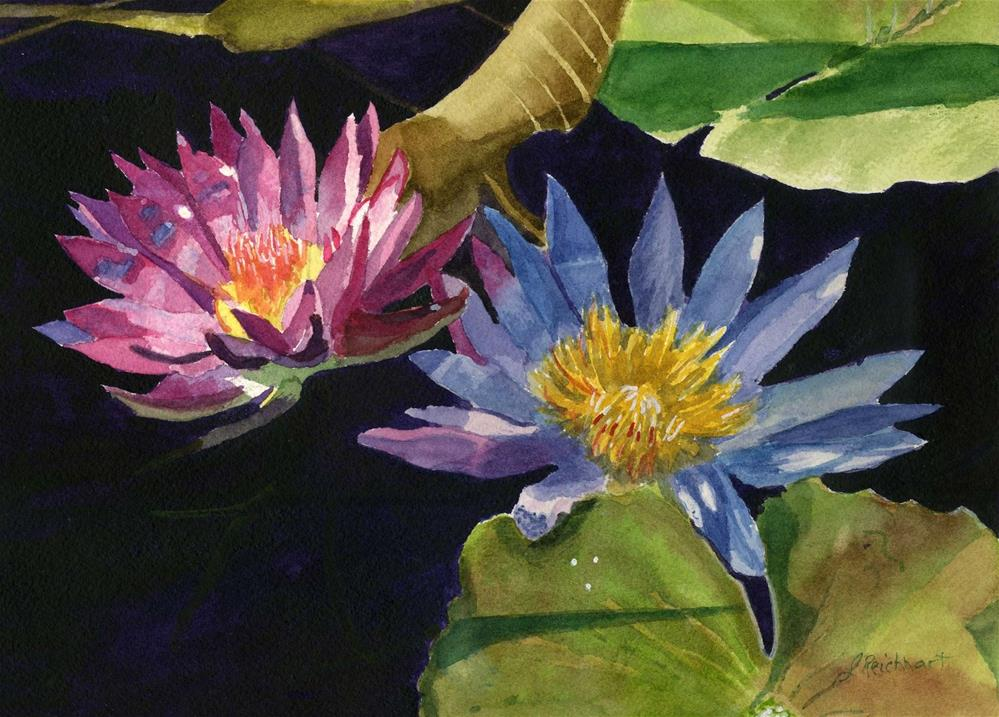 """Water Lilies"" original fine art by Lynne Reichhart"