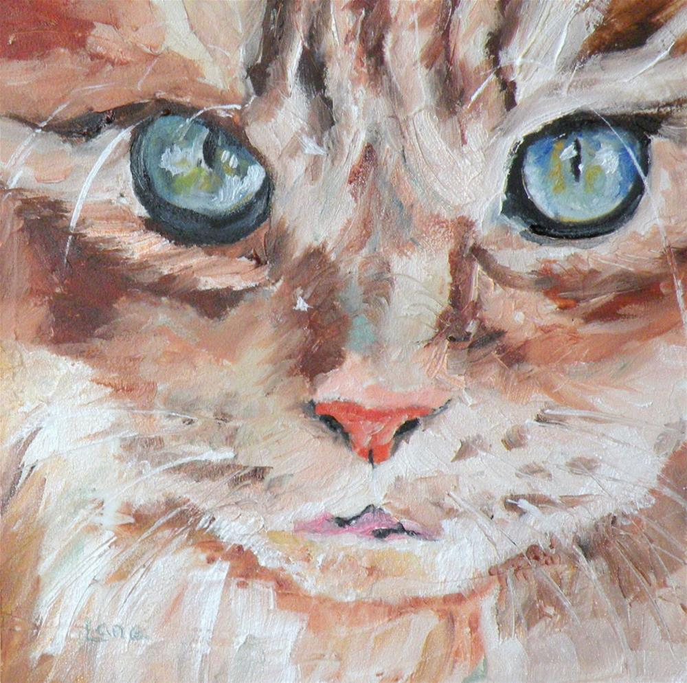 """CAT EYES ORIGINAL 4X4 OIL ON TEXTURED PANEL © SAUNDRA LANE GALLOWAY"" original fine art by Saundra Lane Galloway"