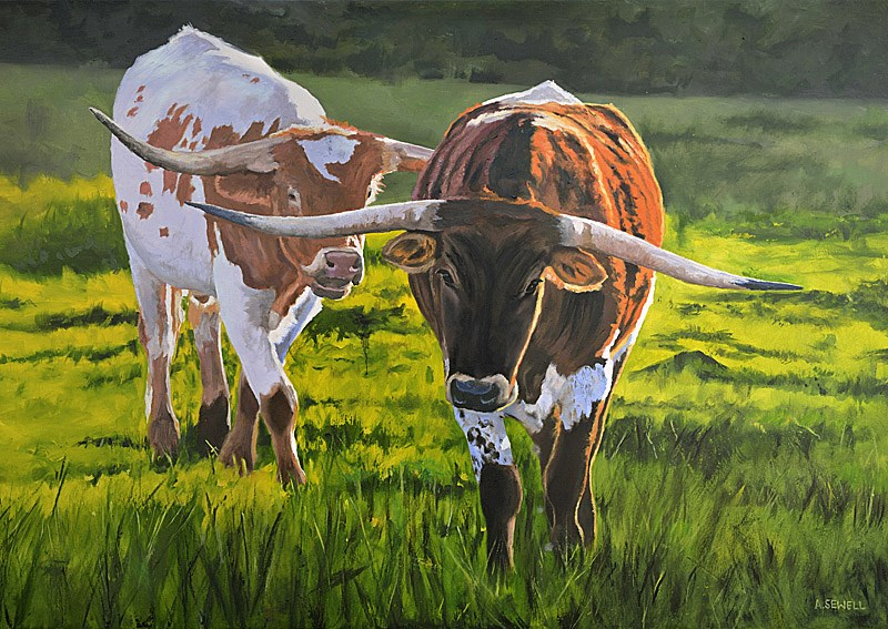 """Longhorn Afternoon"" original fine art by Andy Sewell"