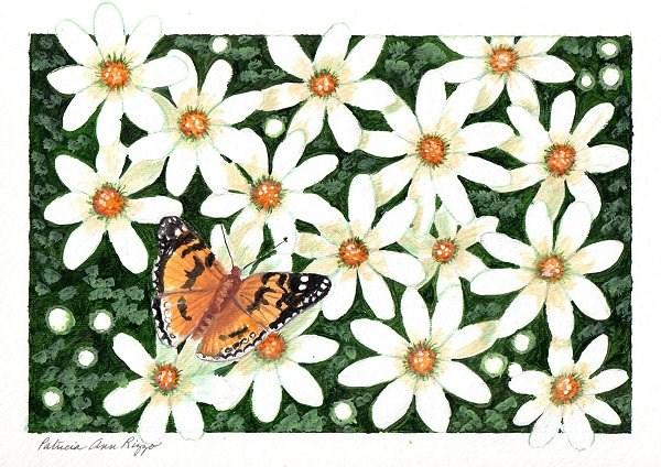 """White Daisies"" original fine art by Patricia Ann Rizzo"