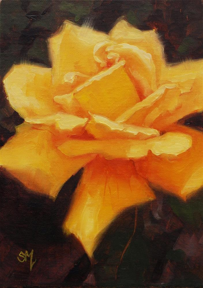 """Gloria  Syled Rose"" original fine art by Susan McManamen"