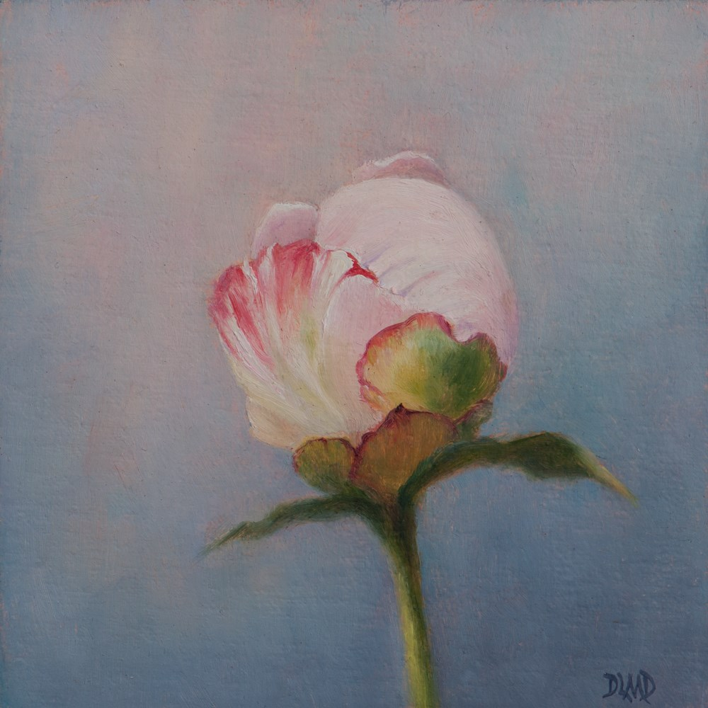 """Peony Bud Captured in Paint!"" original fine art by Debbie Lamey-Macdonald"