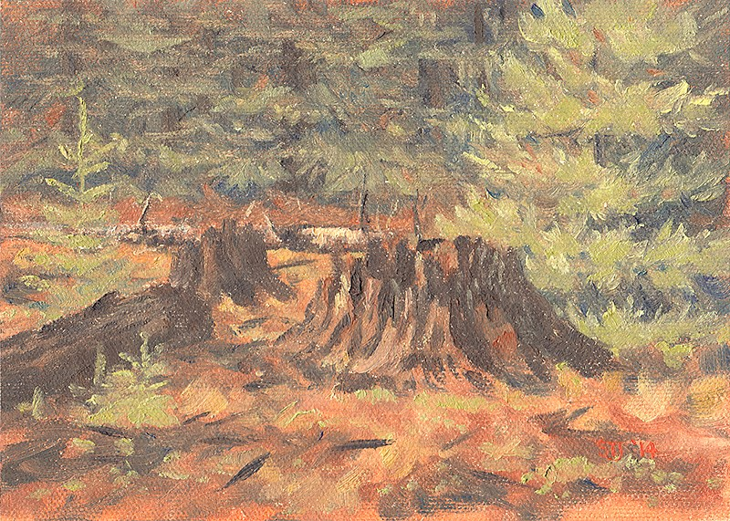 """A Forest Clearing (near Union Creek & the Rogue River, Oregon Cascades)"" original fine art by Steven Thor Johanneson"