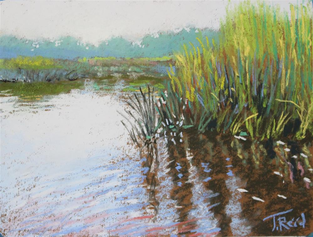 """Blue Reeds"" original fine art by Toby Reid"