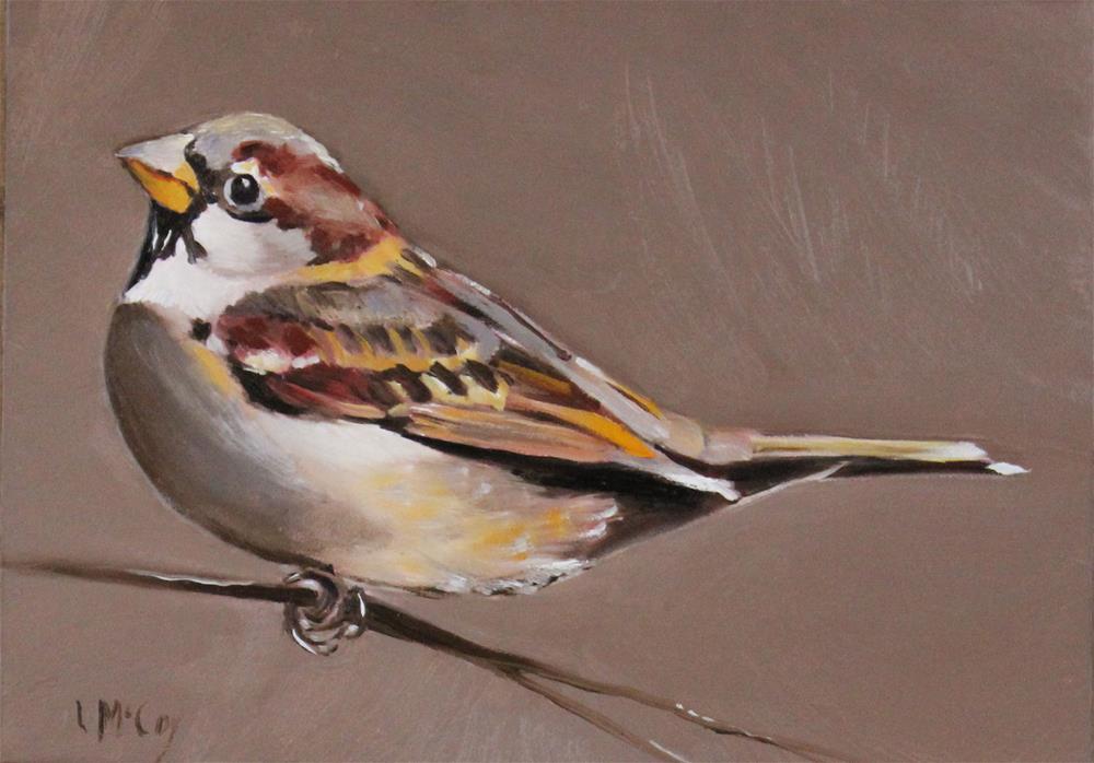 """Nurture, Sparrow Oil Painting"" original fine art by Linda McCoy"